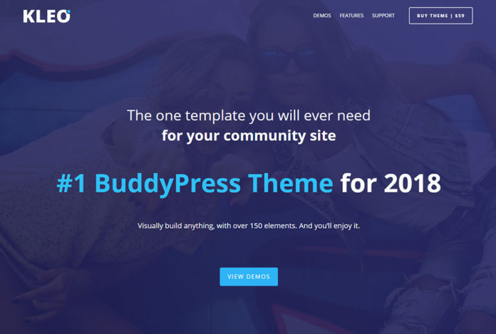 Обзор премиум темы Wordpress Kleo