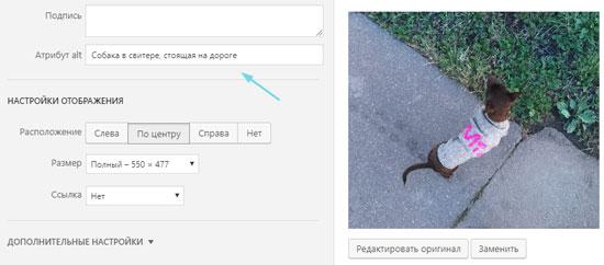 Правильный alt тег у изображения для SEO сайта