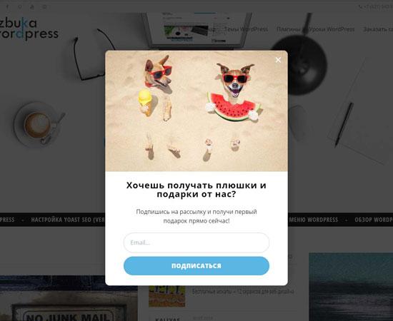 Форма подписки OptinMonster на сайте WordPress