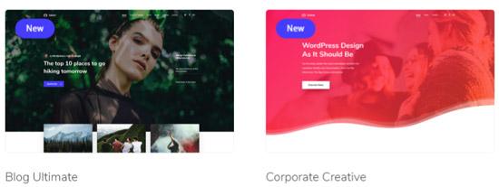Salient - премиум тема WordPress. Пример демо на фото