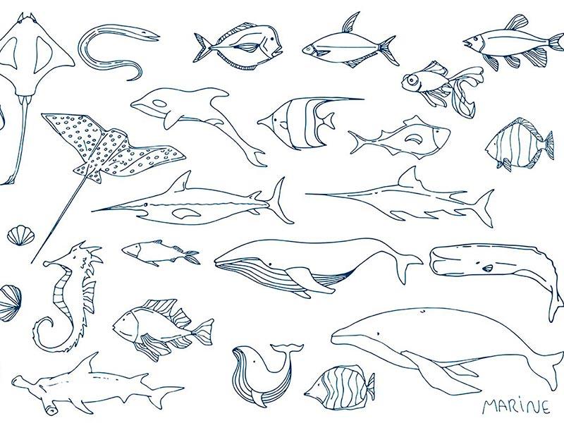 Подводный мир клипарты бесплатно
