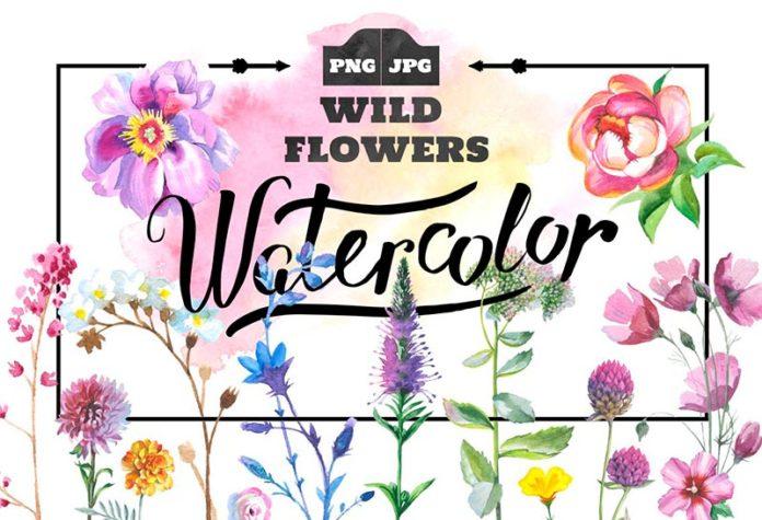 Клипарты цветы акварель бесплатно
