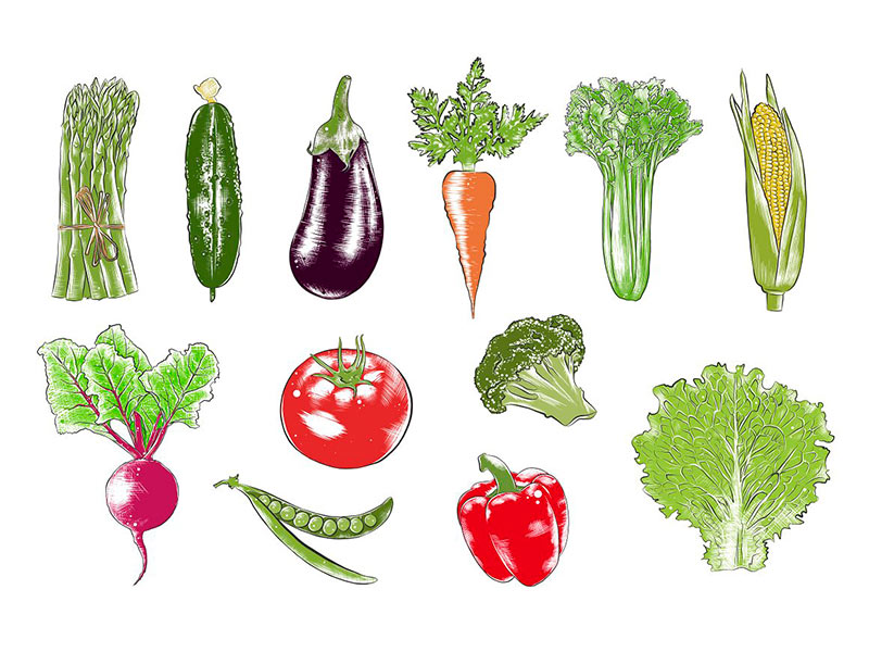 Клипарты овощи бесплатно