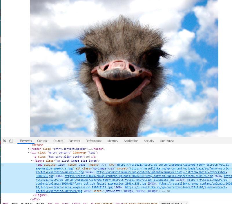Ленивая загрузка изображения в WordPress 5.5